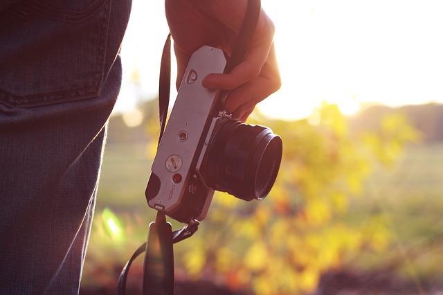 ミラーレスカメラと一眼レフの違い