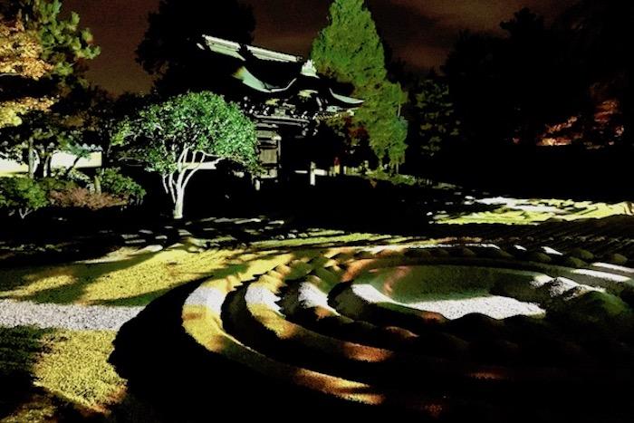 京都高台寺紅葉プロジェクションマッピング