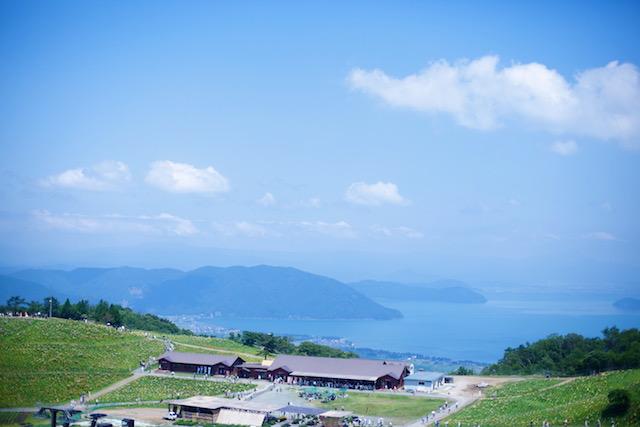 びわこ箱館山ゆり園